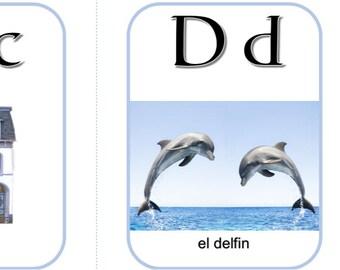 Spanish Alphabet Flashcards, Printable Set