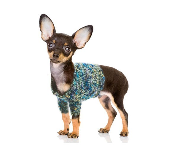 Dog Sweater For Small Size Dog Breed Knitting Pattern Etsy
