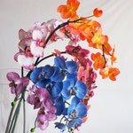 Realistic Single Faux orchid stem / Loose orchid stem / artificial orchid stem / blue real touch orchid / pink orchid /