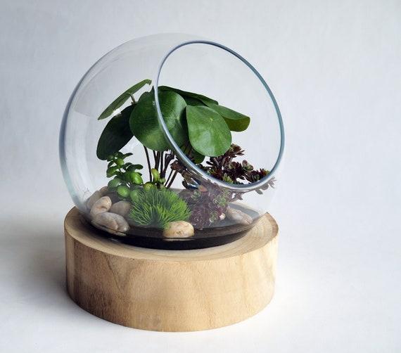 12 Glass Sphere Terrarium With Faux Watercress Plants Etsy