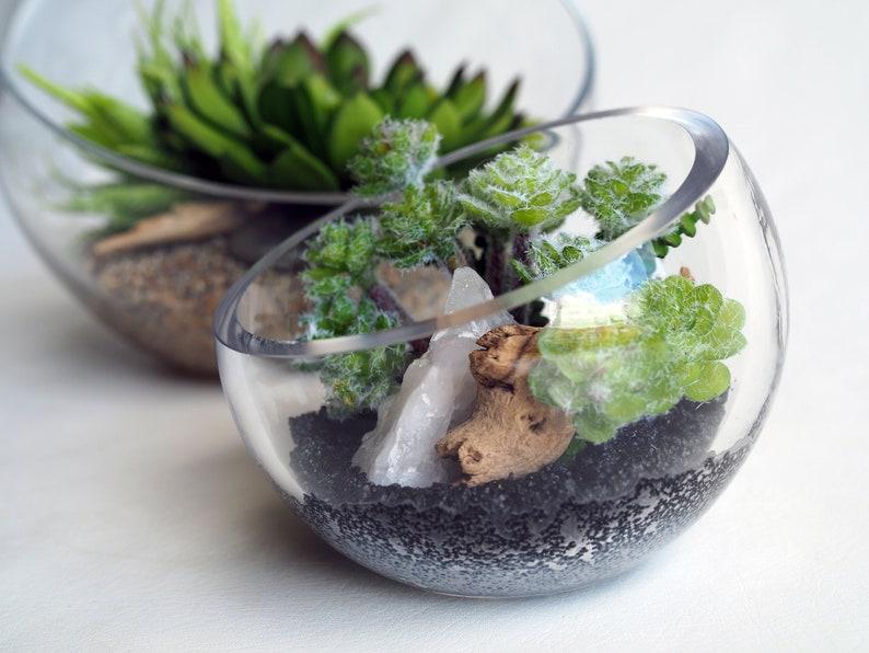 3 Asymmetrical Glass Terrarium With Faux Succulents Etsy