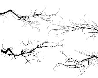 tree branch etsy