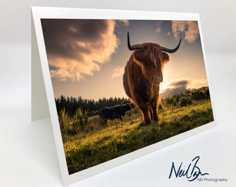 Highland Cow/Coo - Scotland Greeting Card by Scottish Landscape Photographer Neil Barr - Blank Inside