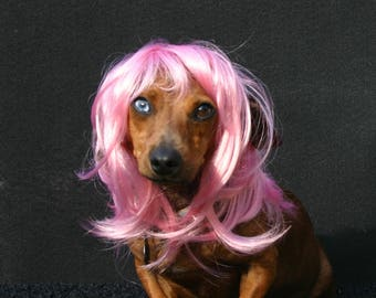 """Dog or Cat Wig - """"the Bobcat"""" pink wig for pets Size XS"""