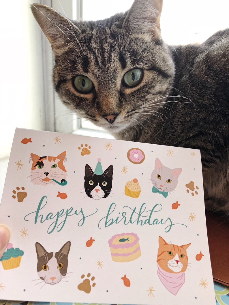 Set Von 5 Happy Birthday Cats Cards Cat Party