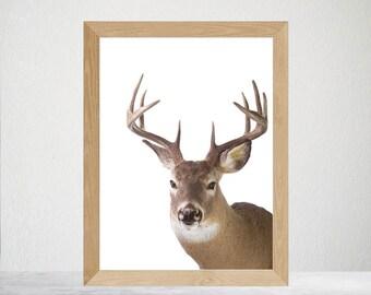 Printable Deer Nursery Wall Art, Deer Antlers Print, Woodland Nursery, Woodland Animal Print Deer Head, Nursery Wall Art, Woodlands Wall Art