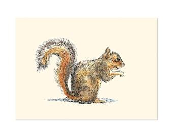 Sitting Squirrel, art gift print 5x7 Animal Watercolor Illustration, home wall decor