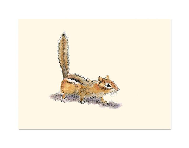 Curious Chipmunk art gift print 5x7 Animal Watercolor image 0