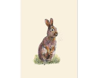 Rabbit, art gift print 5x7 Animal Watercolor Illustration, home wall decor