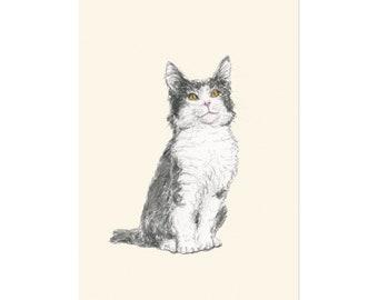 Kitty, art print 5x7 Animal Illustration, home wall decor