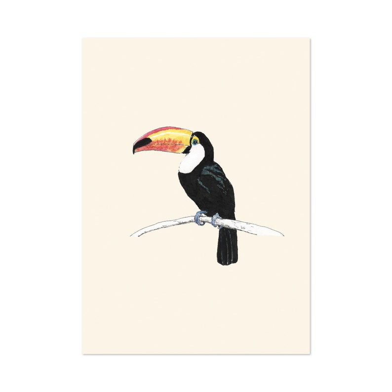 Toucan bird art print 5x7 Animal Watercolor Illustration image 0