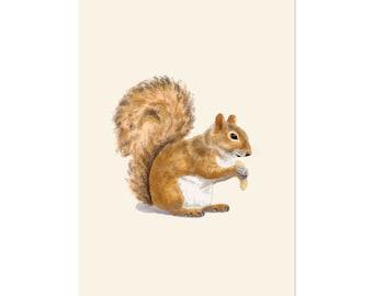Peanut Squirrel, art print 5x7 Animal Illustration, home wall decor