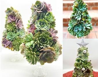"Succulent Tree -10"" Tall - Live Succulent Tree - Mini Trees - Christmas Decor - Succulent Arrangements"