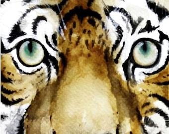The Tiger Look, Tiger, Tiger Face, Gicleé Print, Art Print, Original Watercolor Painting