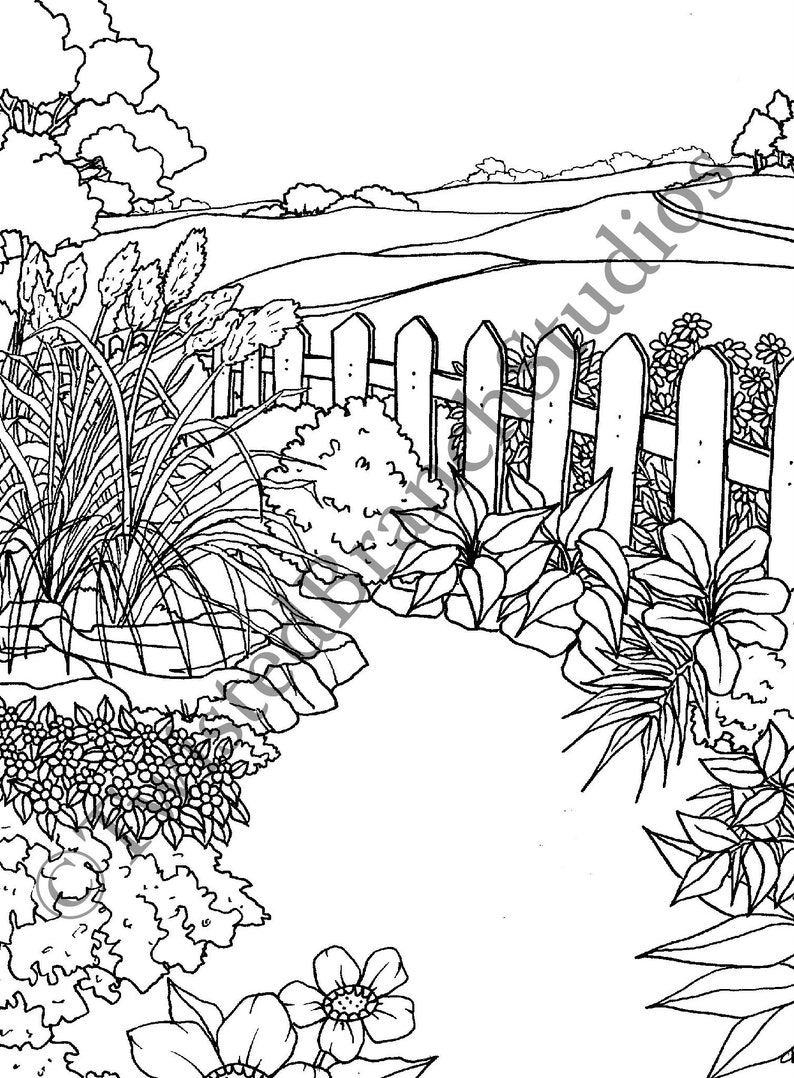 Country Garden Coloring Page Instant Download Digital Coloring Sheet  Coloring Book Cynthia Kloeter
