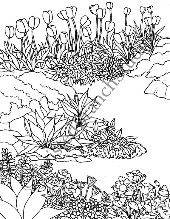 Flower Garden Coloring Page Instant Download Digital Coloring Sheet  Coloring Book Cynthia Kloeter