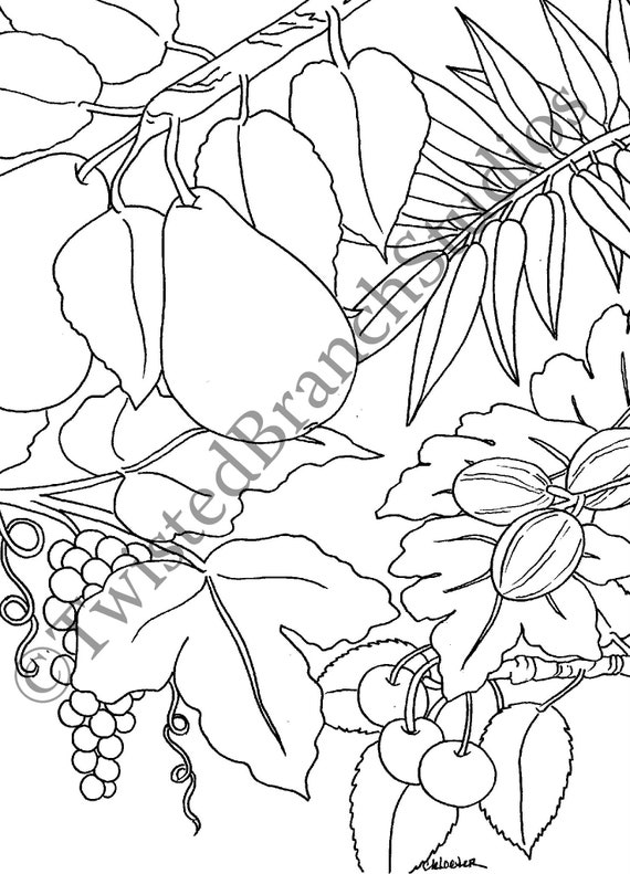 Fruit Tree Adult Coloring Pages Instant Download Printable Art Etsy
