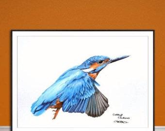 Yorkipoo fine art giclee print from hand drawn coloured pencil original artwork.