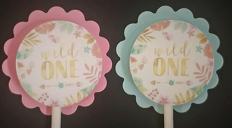 Wild One Girl 1st Birthday Theme Cupcake Toppers Set of 24