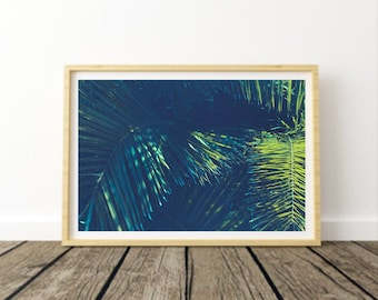 Electric Summer Photographic Print, Beach, Tropical, Palm Tree, Green, Nature Photography