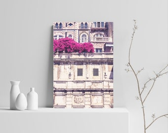 Portuguese Spring Photographic Print, Lisbon, Portugal, Flowers, Urban Photography