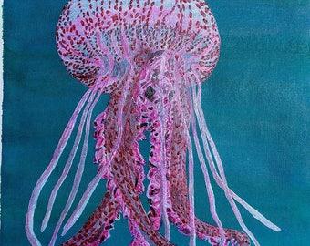 Man-of-war Jellyfish