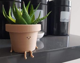 43f2de937e1e30 Indoor plant pot