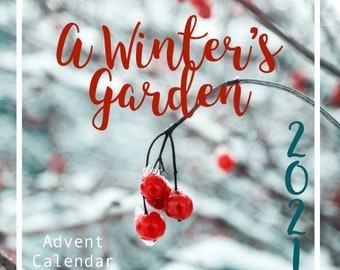 A Winter's Garden Christmas Advent Calendar 2021 Hand Dyed Yarn