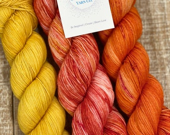 3 Skein Yarn Kit Hand dyed Sock weight Fingering FREE SHIPPING