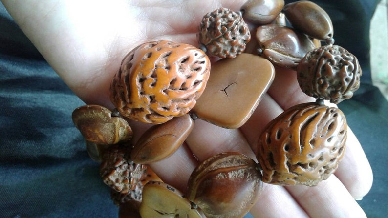 nature nut Walnut necklace long necklace almond statment laquared beaded necklace natural strand necklace unique jewelry unusual