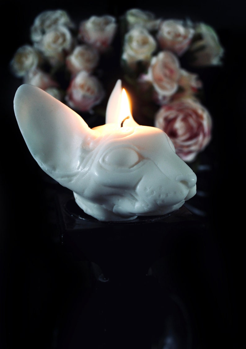 Sphynx Cat Scented Candle  Unique Candles Ivory, Cocoa Butter