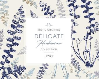 Herbarium clip art, watercolor florals, delicate gold & blue
