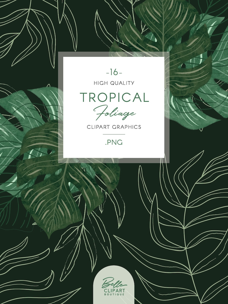 botanical line drawing /& wreaths hand painted leaf illustration Tropical Foliage clip art