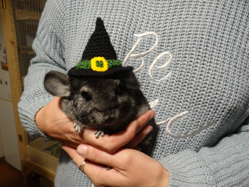 Witch pet hat tiny witch hat knitted hat witch hat for image 0
