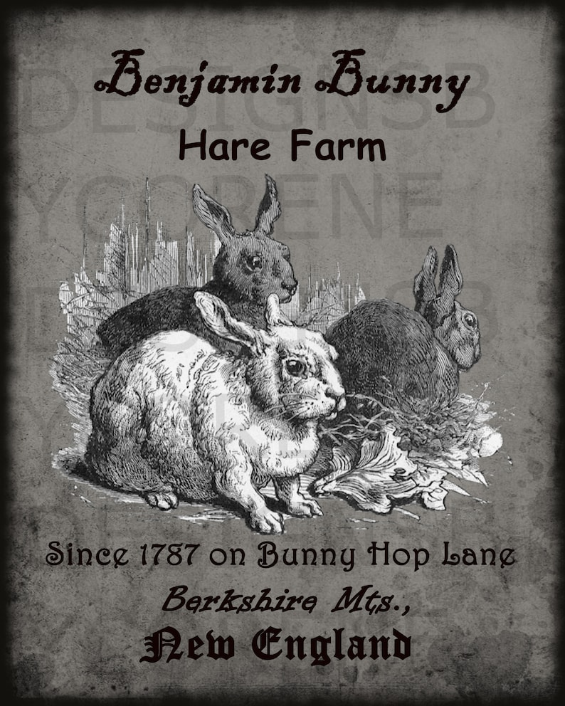 Primitive Vintage Benjamin Bunny Hare Farm Printable Digital Image Feedsack Logo for Pillows Pantry Labels Hang tags Magnets Ornies