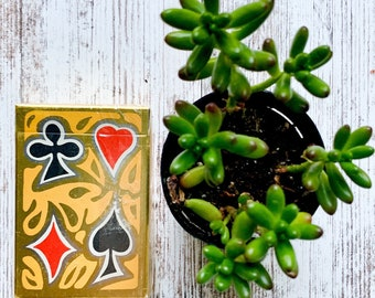 Groovy Vintage Playing Cards  |  Insurance Agent Promo Deck  |  Retro Client Gifts  |  NOS