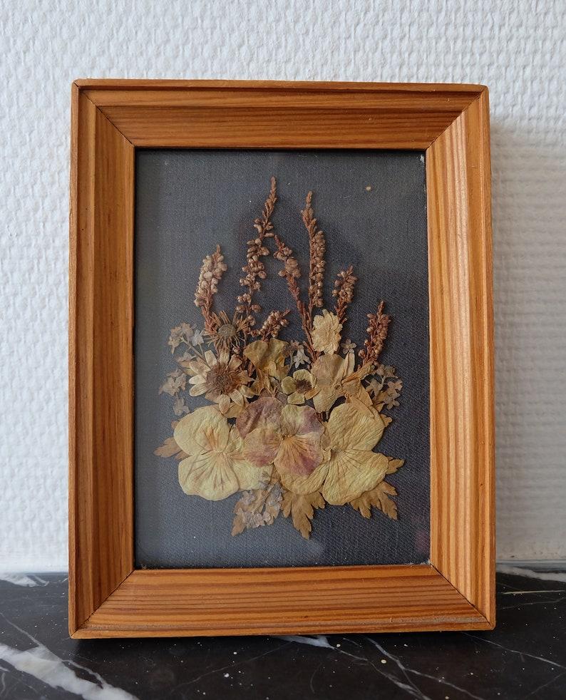Herbarium Sous Verre Herbier Vintage Made In Poland Etsy