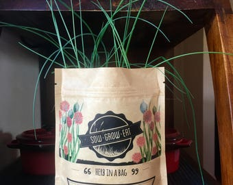Chives Herb in a Bag, Organic Seeds, Gift