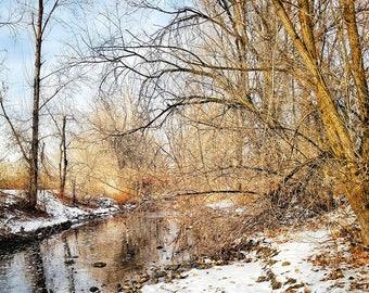 Beautiful River at Wheeler Farm on a Winter Morning
