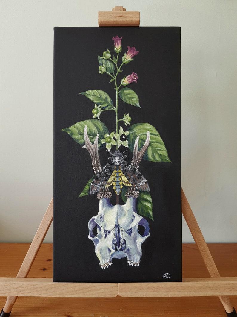 Deer Skull Deadly Nightshade Death/'s Head Moth Original Giclee Print