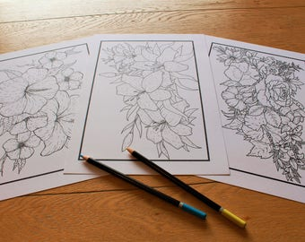 3 Floral printable colouring pages