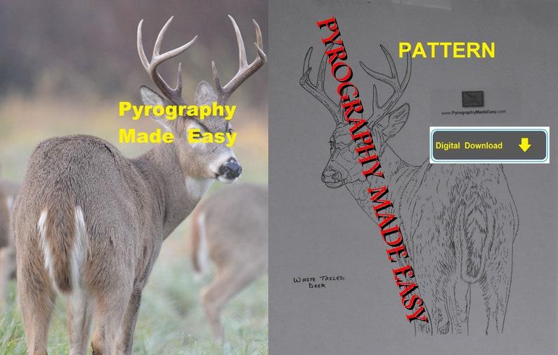 White Tailed Deer Pyrography Pattern Wood burning pattern image 1
