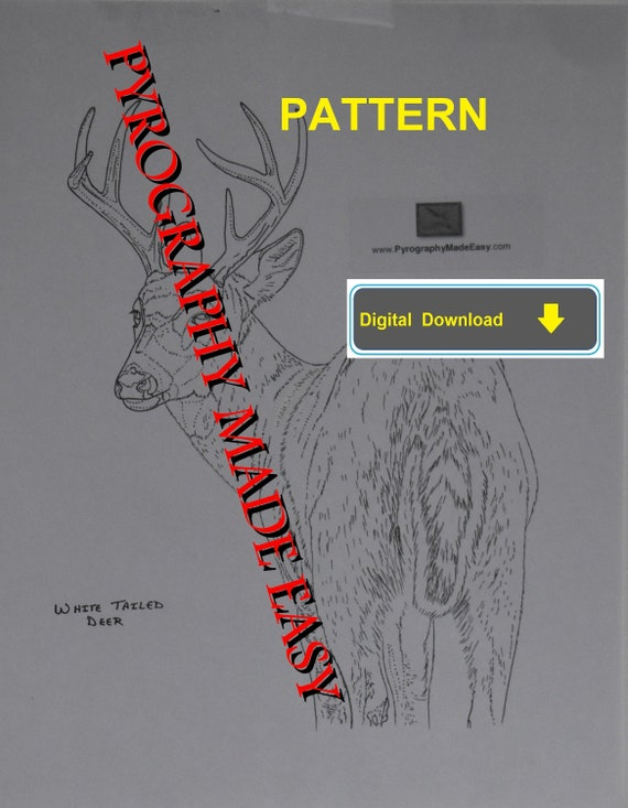 White Tailed Deer Pyrography Pattern Wood Burning Pattern Etsy