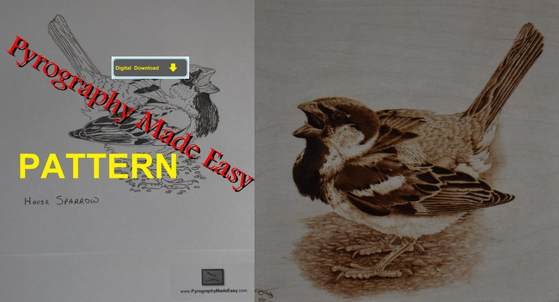 House Sparrow Pyrography Pattern Wood burning pattern digital image 1