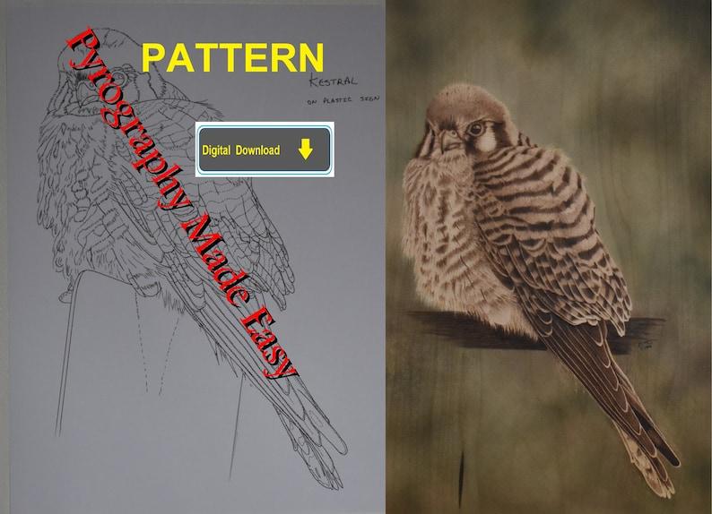 Perched Kestrel Hawk Pyrography Pattern Wood burning pattern image 0