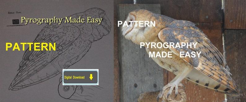 Barn Owl II Pyrography Pattern Wood burning pattern digital image 0