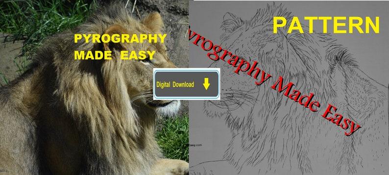 Lion Side View Pyrography Pattern Wood burning pattern digital image 0