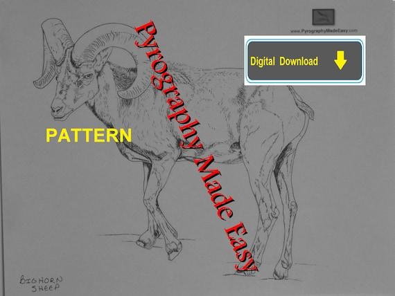 Bighorn Sheep Pyrography Pattern Wood Burning Pattern Digital Etsy