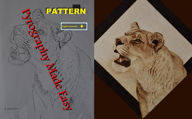 Lioness Pyrography Pattern Wood burning pattern digital image 0