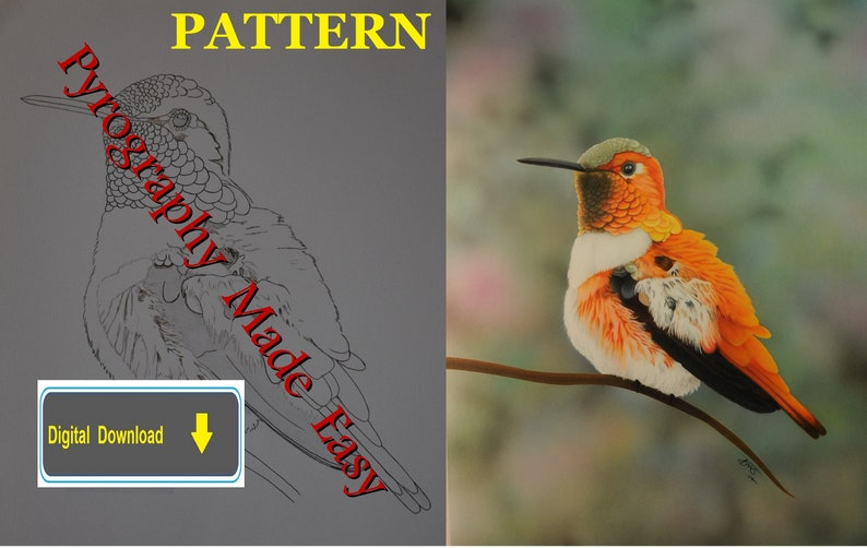 Rufus Hummingbird Pyrography Pattern Wood burning pattern image 1